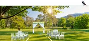 buffalo_motel_slideshow_01_wedding4