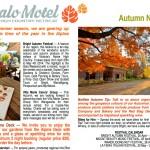 autumn-news2013