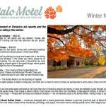 winter-news2013